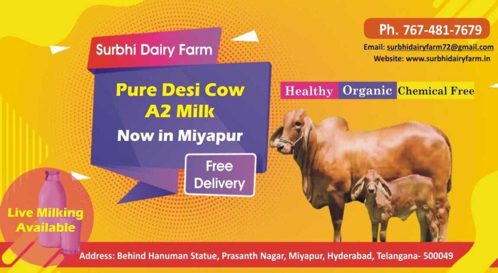 Surbhi Dairy Farm Hyderabad