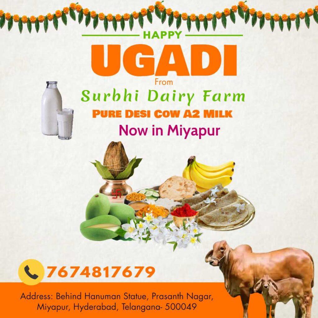 Surbhi Dairy farm